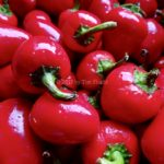 Cherry Bomb Peppers